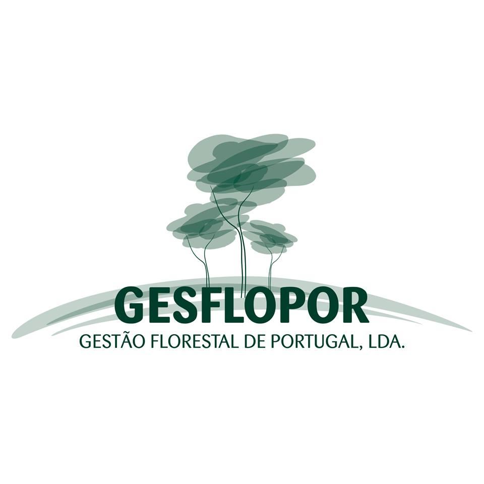 SERVIÇOS FLORESTAIS/Informe-se