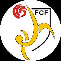 Federació Catalana de Fútbol