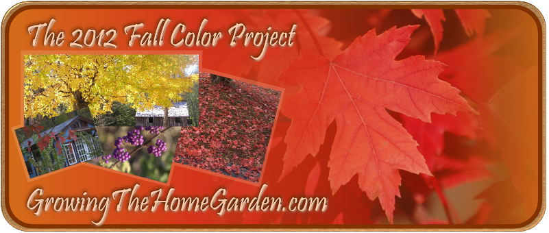 The 2012 Fall Color Project logo