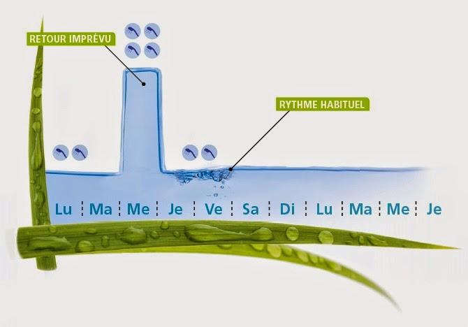 chauffe-eau atlantic odyssee avec gestion des imprévus