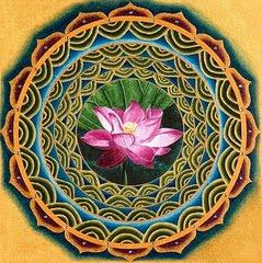 Flor deLotus