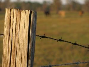 farm_fence