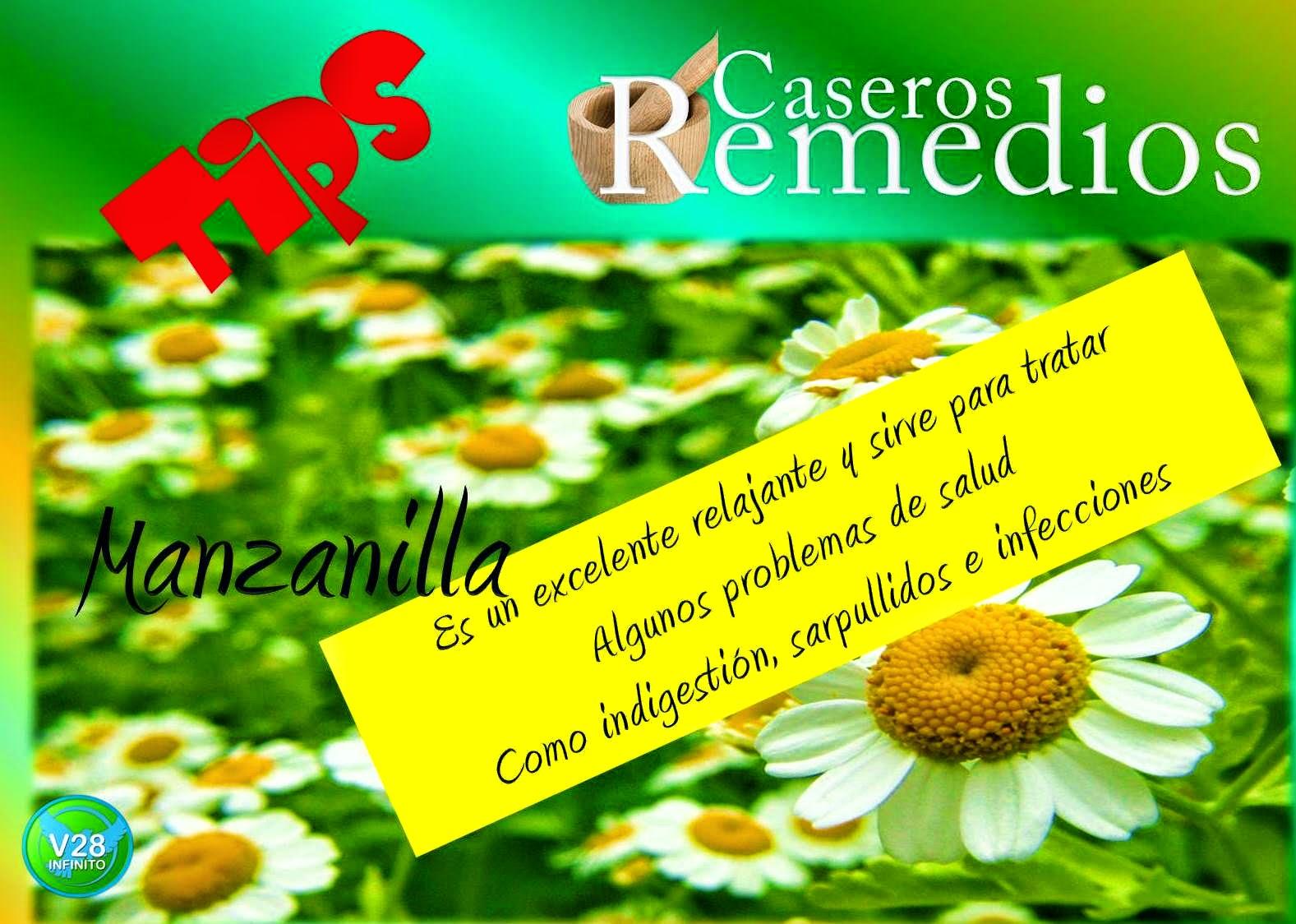 imagen manzanilla remedios caseros