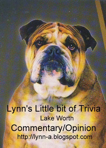 Lynn's little bit of trivia