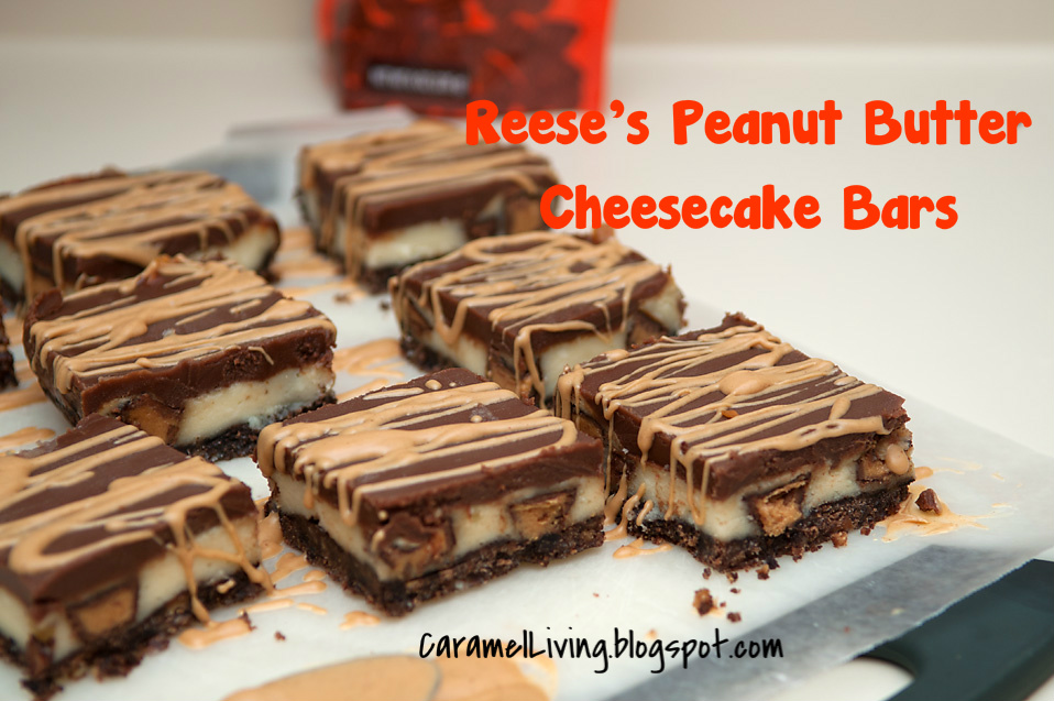 Reese's Peanut Butter & Chocolate Cheesecake Bars Recipes — Dishmaps