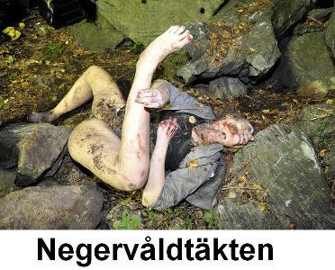 svenska styckmord