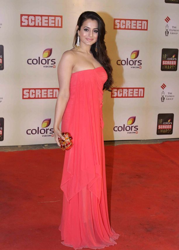 Amisha patel in red hot gown1 - Hot Amisha Patel at 18th Annual Colors Screen Awards