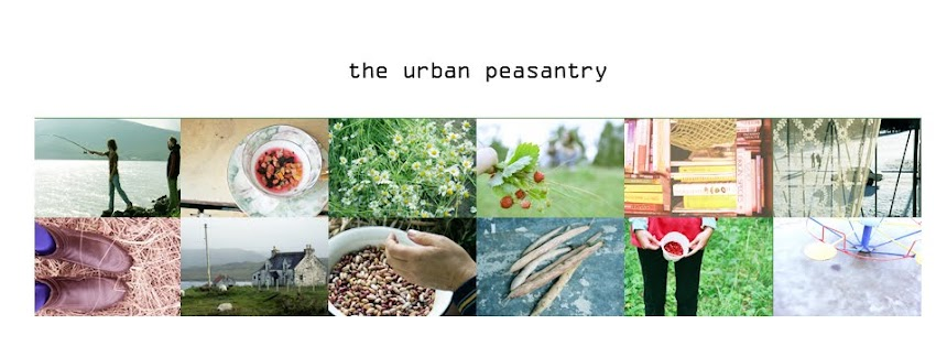 The urban peasantry