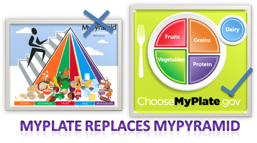 Colour Nutrition: An Introduction to MyPlate
