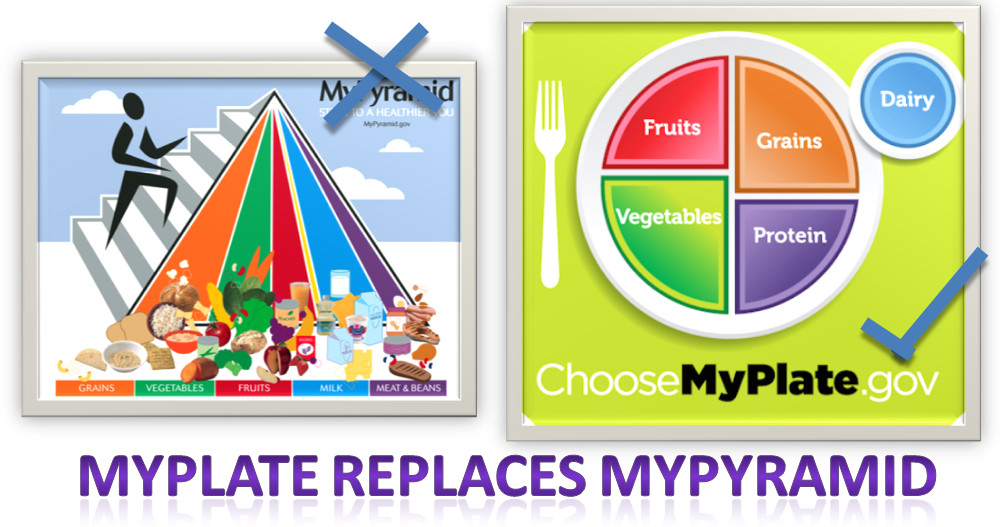 Colour Nutrition  An Introduction To Myplate