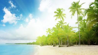 Beautiful scenery on the beach wallpaper