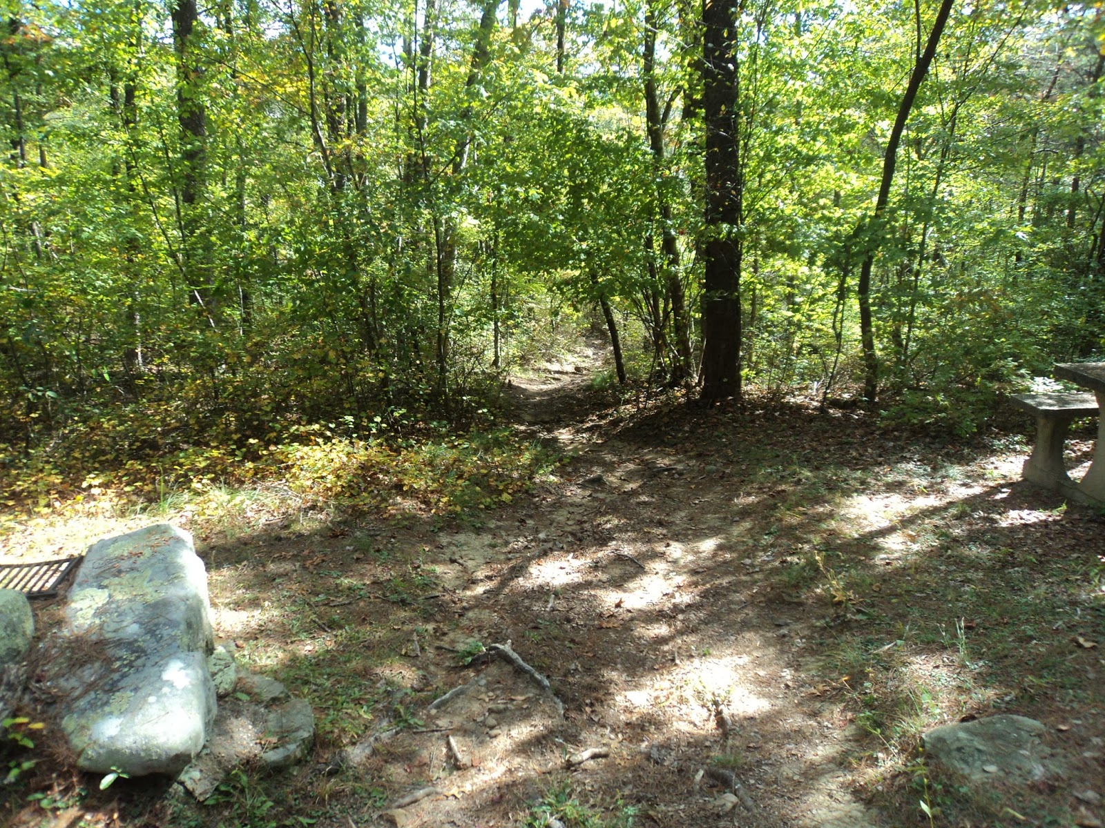 Trailhead Behind Picnic Shelter