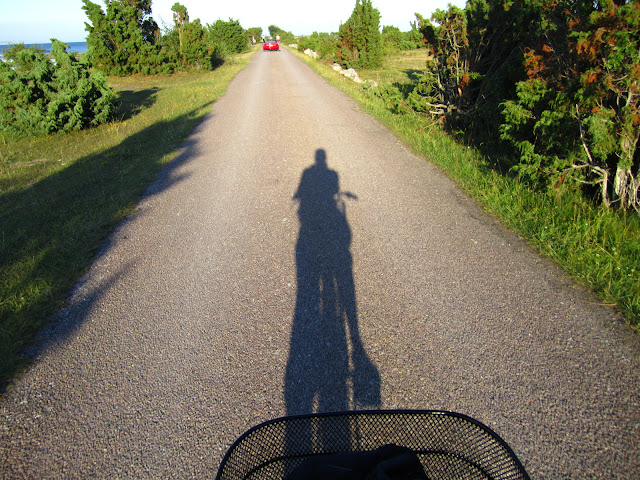 Bicycling in Oland, Sweden.