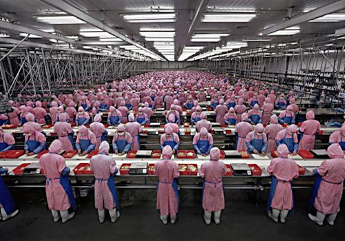 работа в японии,фабрика,конвейер