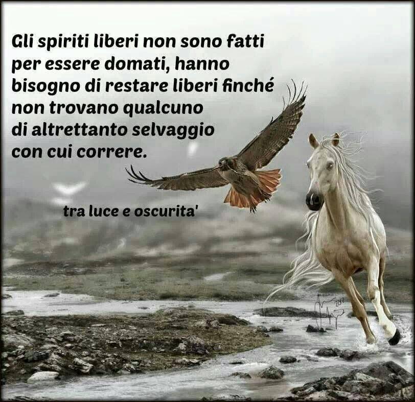 Il bene più prezioso per gli uomini è... la libertà.