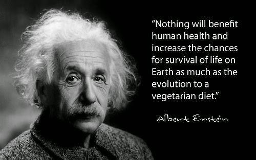 Albert Einstein - Vegetarian Thoughts