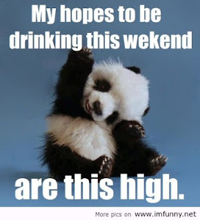 Weekend Breaks Funny Quotes   Funny Weekend Quotes And Sayings