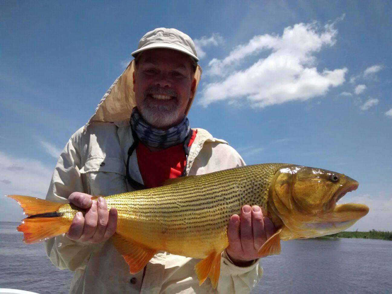 First cast fly fishing golden dorado argentina buenos for Golden dorado fish