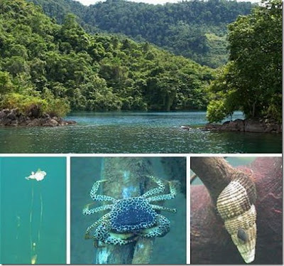 7 Danau Paling Dalam Di Dunia