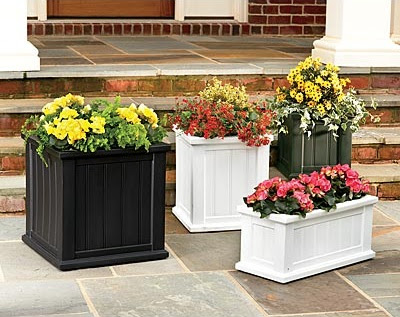 Lexington Planters