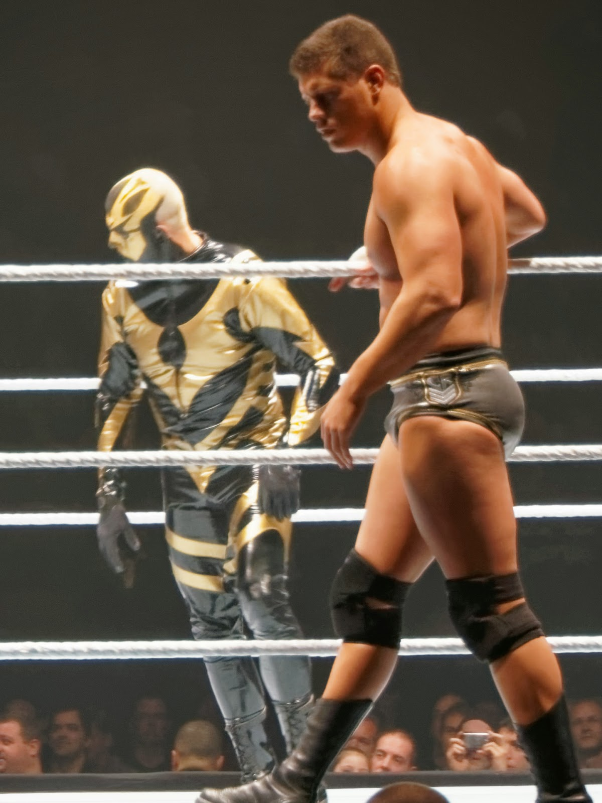 Dustin Rhodes Stardust Sibling Brothers