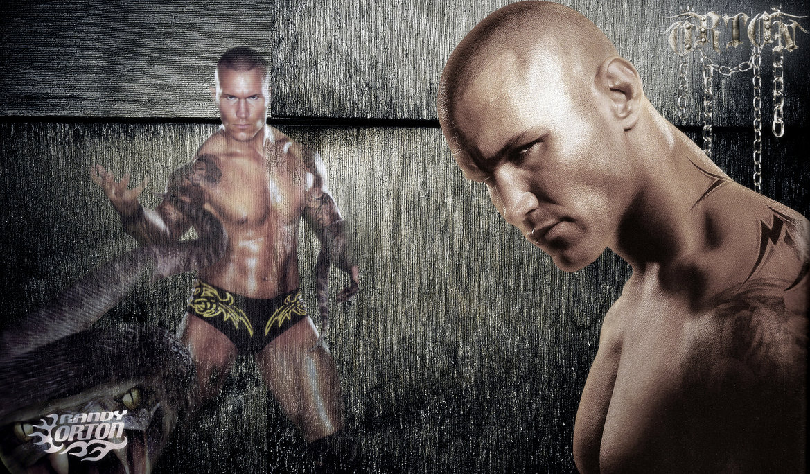 Download Top HD Sports Wallpapers For Windows Randy Orton