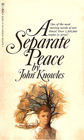 a separate peace catcher in the A summary of themes in john knowles's a separate peace learn exactly what happened in this chapter, scene, or section of a separate peace and what it means perfect for acing essays, tests.