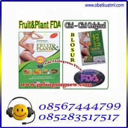 agen obat pelangsing tercepat fruit plant usa hub