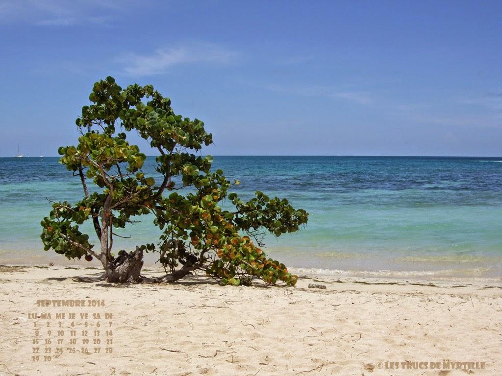 Fond d'écran #3 de SEPTEMBRE 2014, avec et sans le calendrier du mois - Martinique (photo août 2008)
