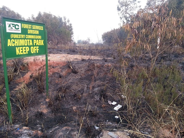 'Wee smokers' accused of Achimota Forest fire