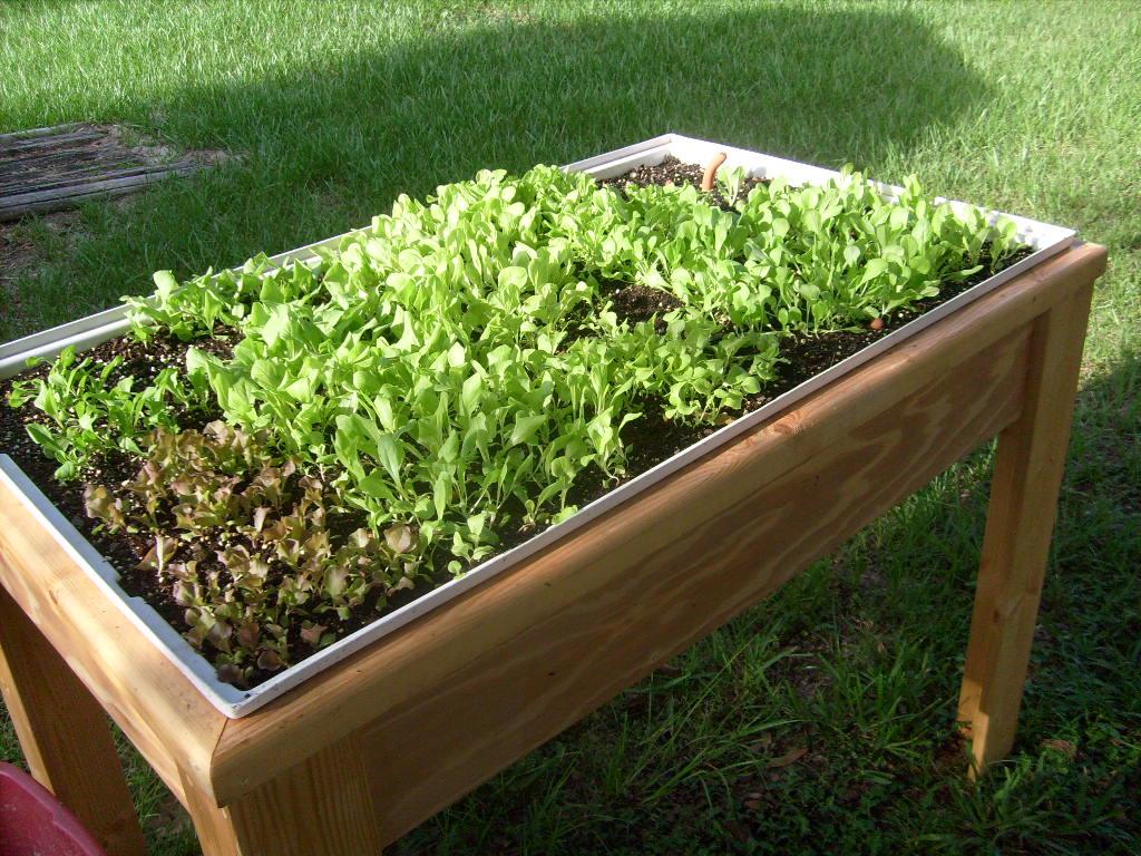 Organic gardening supplies - Hydroponic container gardening ...
