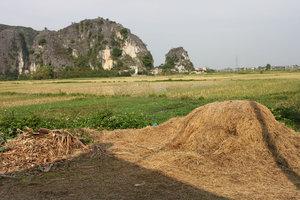 Landscape in Tam Cốc