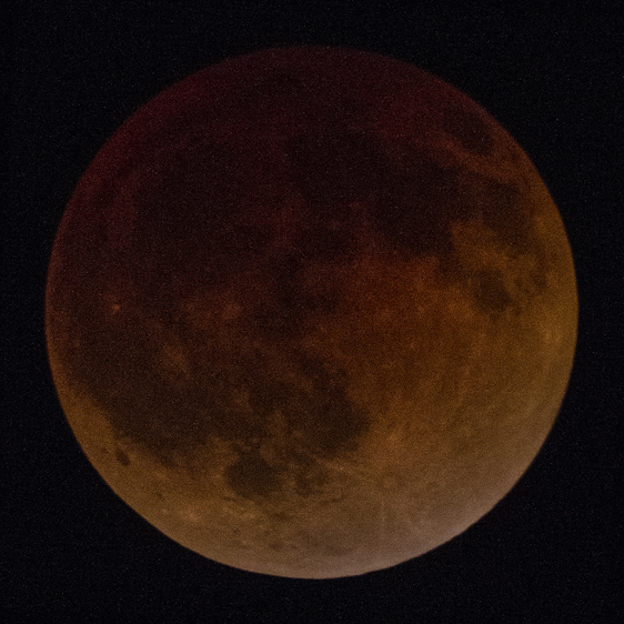 April 15, 2014 lunar eclipse, Meade 645 Newtonian reflector, prime focus, Canon 7D