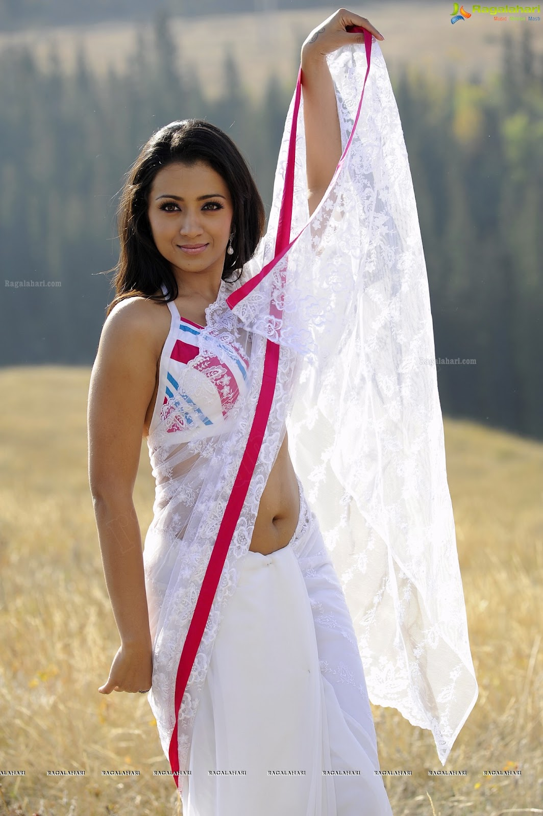 Trisha in hot Transparent Backless Saree1 -  Trisha Hot Pics In Transparent Backless Saree