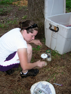 Student collects bugs in the field.