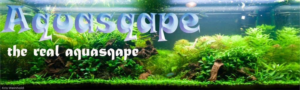 Aquasqape
