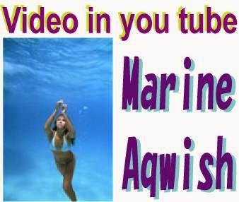Marine Aqa Video in you tube