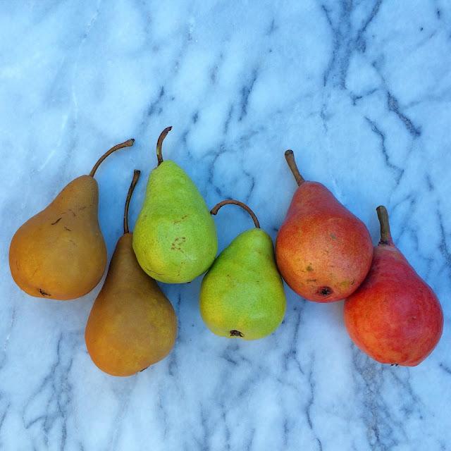 Great Appetizer using fresh pears   www.jacolynmurphy.com