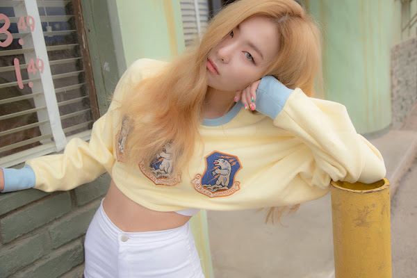 Seulgi Red Velvet Ice Cream Cake