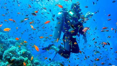 Paquetes de Buceo en las islas Galápagos tours