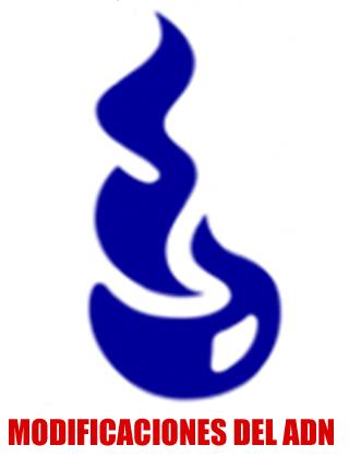 El logo de Unilever: ¿Tiene un mensaje oculto?