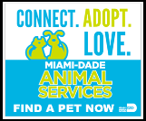 Save a life,<br>adopt a shelter pet