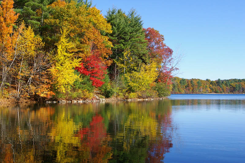 walden and transcendentalism Transcendentalism is a philosophical movement that developed in the late 1820s and 1830s in the eastern  the pure walden water is mingled with the sacred water of.