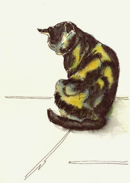 Tortoiseshell or calico cat sketch ink watercolour