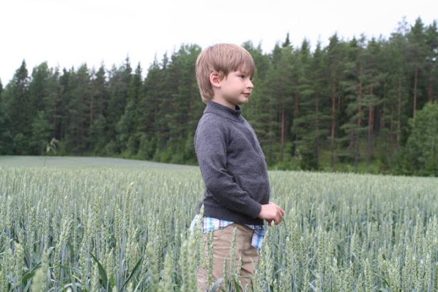 Matti in green wheat field.