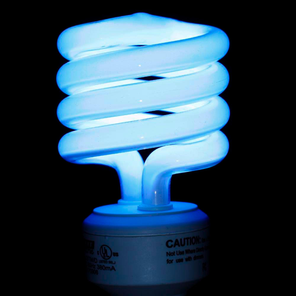 Therightrant compact fluorescent bulbs even more dangerous than we thought Fluorescent light bulb