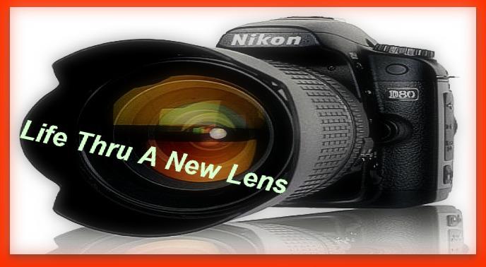 Life Thru A New Lens