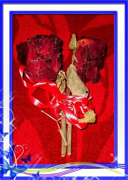 Las rosas que no se marchitan.