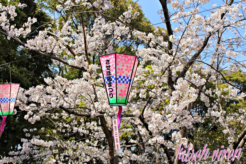 25 before 26, goals, makeup, mental health, personal, radical self love, self care, yearly goals, goals, cherry blossoms, cherry blossom festival, japan, sasebo