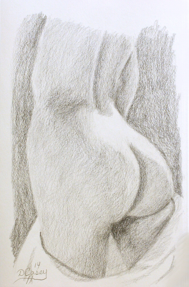 140918 - Day 18a - 30 in 30 Challenge - Graphite on paper -  Dave Casey - TheDailyPainter.jpg